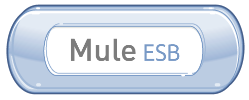 We are hiring Mule ESB Developer for locations across India